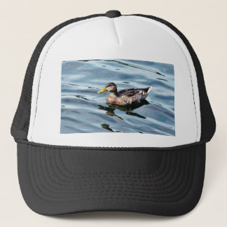 Female Mallard Duck Swimming Trucker Hat