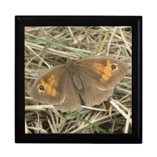 Female Meadow Brown Butterfly Gift Box