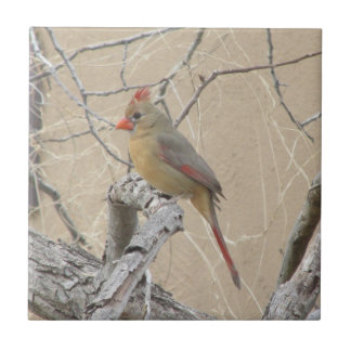 Female Northern Cardinal Ceramic Tile