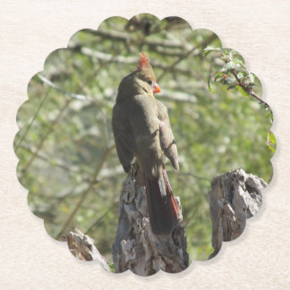Female Northern Cardinal Paper Coaster