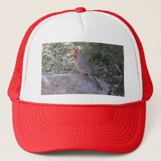 Female Northern Cardinal Trucker Hat