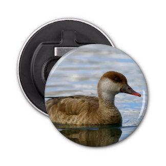 Female pochard duck, netta rufina bottle opener