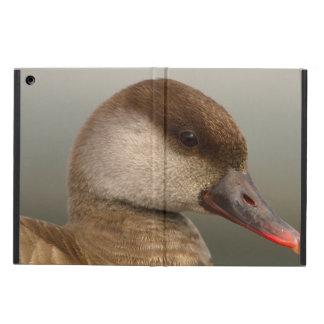 Female pochard duck, netta rufina iPad air cover