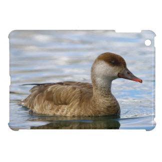 Female pochard duck, netta rufina iPad mini case