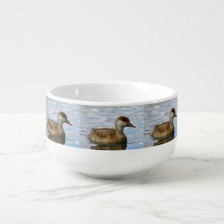 Female pochard duck, netta rufina soup mug