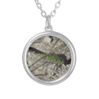 Female Podhawk Dragonfly Pendent Silver Plated Necklace