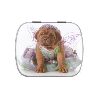 Female Puppy - Dogue De Bordeaux Puppy Candy Tins