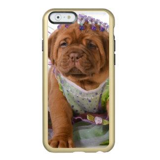 Female Puppy - Dogue De Bordeaux Puppy Incipio Feather® Shine iPhone 6 Case