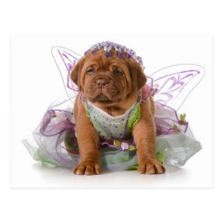 Female Puppy - Dogue De Bordeaux Puppy Postcard