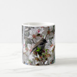 Female sunbird sipping nectar coffee mug