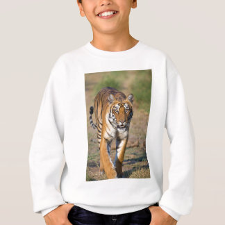 Female Tigress Stalking Prey Sweatshirt