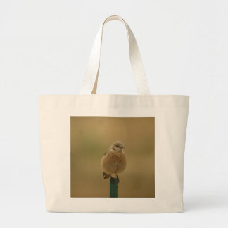female Western Bluebird Bag