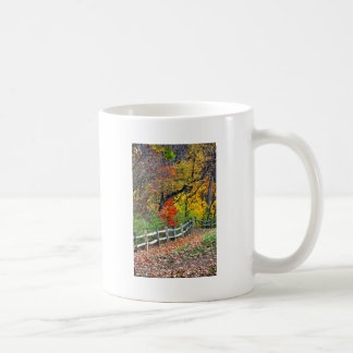 Fence in the Park Coffee Mug