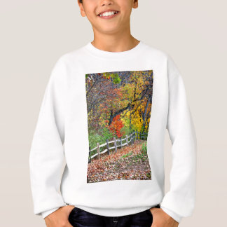 Fence in the Park Sweatshirt