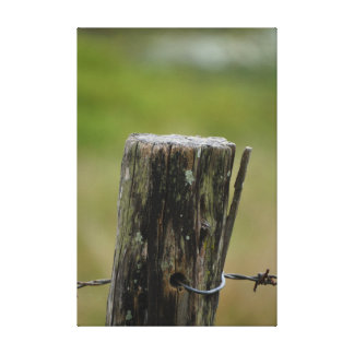 FENCE POST IN AUSTRALIA GALLERY WRAP CANVAS