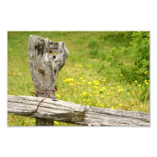 Fence Post Print Photograph