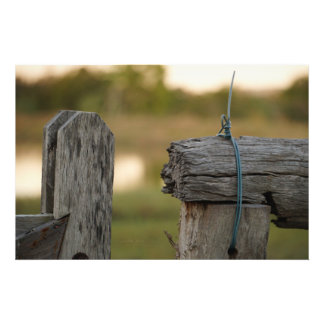 FENCE POSTS RURAL QUEENSLAND AUSTRALIA PHOTOGRAPH