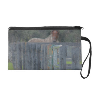fence with horse behind abstracted grunged wristlet