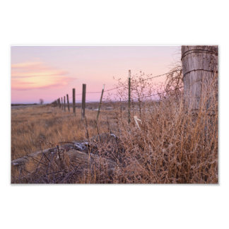 Fences Photo Print