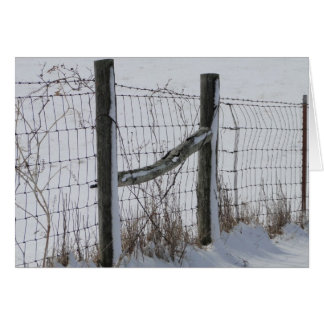 Fences & Snow Card