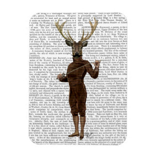 Fencing Deer Full Rectangular Photo Magnet