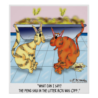 Feng Shui In The Litter Box Is Off Poster