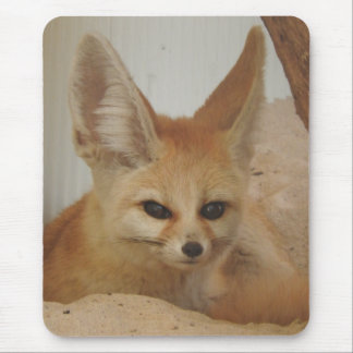 Fennec Fox Mouse Pad