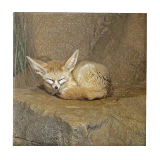 fennec fox small square tile