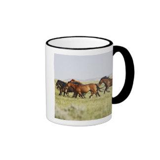 Feral Horse Equus caballus) herd of wild Ringer Mug
