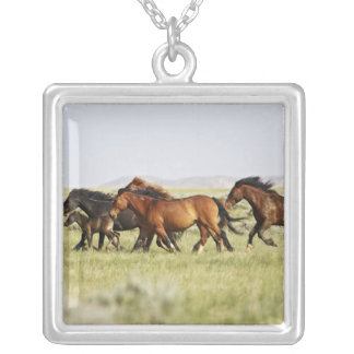 Feral Horse Equus caballus) herd of wild Square Pendant Necklace