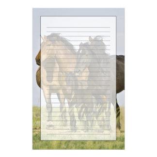 Feral Horse Equus caballus) wild horses 3 Personalised Stationery