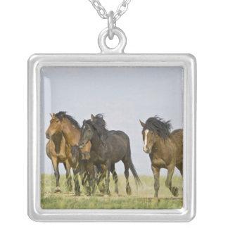 Feral Horse Equus caballus) wild horses 3 Square Pendant Necklace