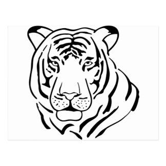 Feral Tiger Drawing Postcard