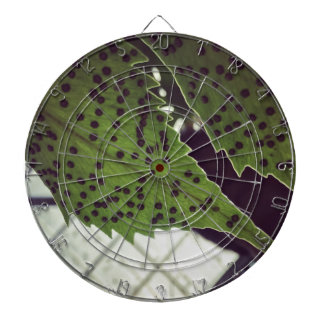 fern dartboard