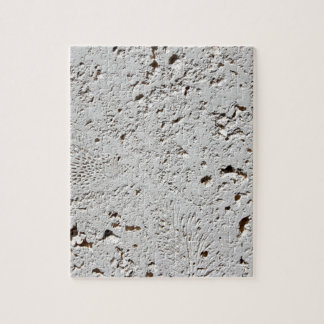 Fern Fossil Tile Surface Closeup Jigsaw Puzzle