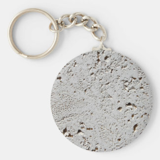 Fern Fossil Tile Surface Closeup Key Ring
