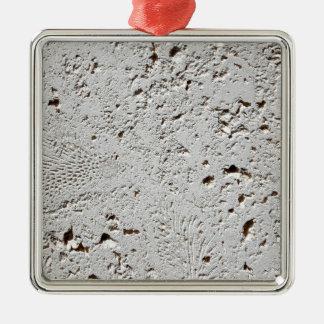 Fern Fossil Tile Surface Closeup Metal Ornament