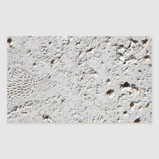 Fern Fossil Tile Surface Closeup Rectangular Sticker