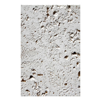 Fern Fossil Tile Surface Closeup Stationery
