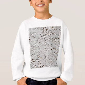 Fern Fossil Tile Surface Closeup Sweatshirt
