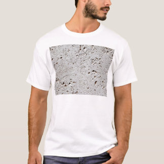 Fern Fossil Tile Surface Closeup T-Shirt