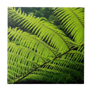 Fern leaf tile