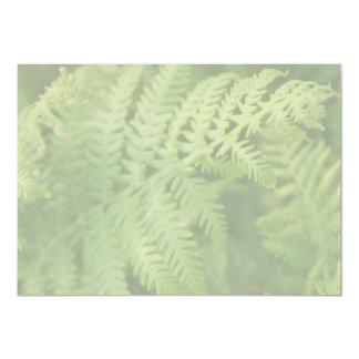 Fern Leaves, Light Green. Card