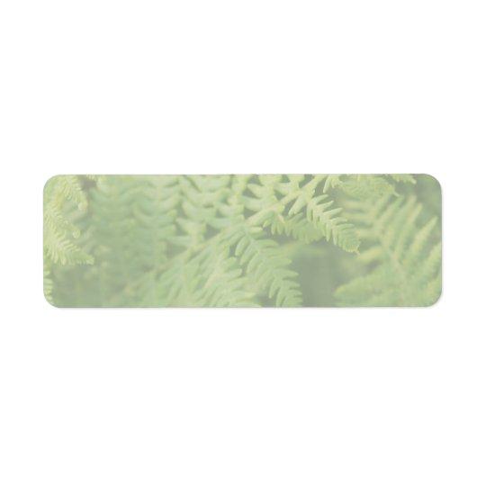 Fern Leaves, Light Green. Return Address Label