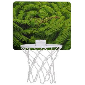 Fern Leaves Mini Basketball Hoop