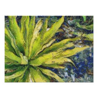 Fern plant looking beautiful photo print