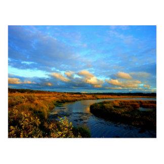 Fern Ridge I Postcard