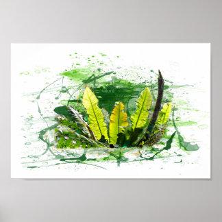 Fern, sheets, jungle, landscape, nature poster