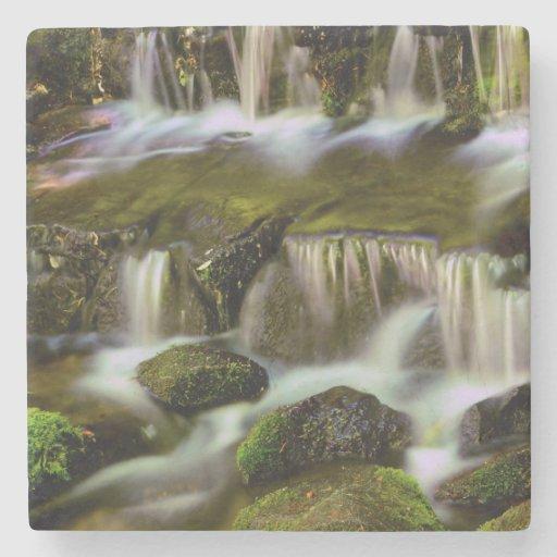 Fern Spring, Yosemite National Park, California Stone Beverage Coaster