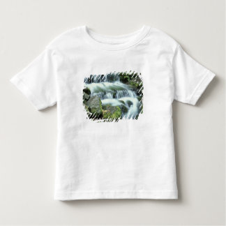 Fern Spring, Yosemite National Park Toddler T-Shirt